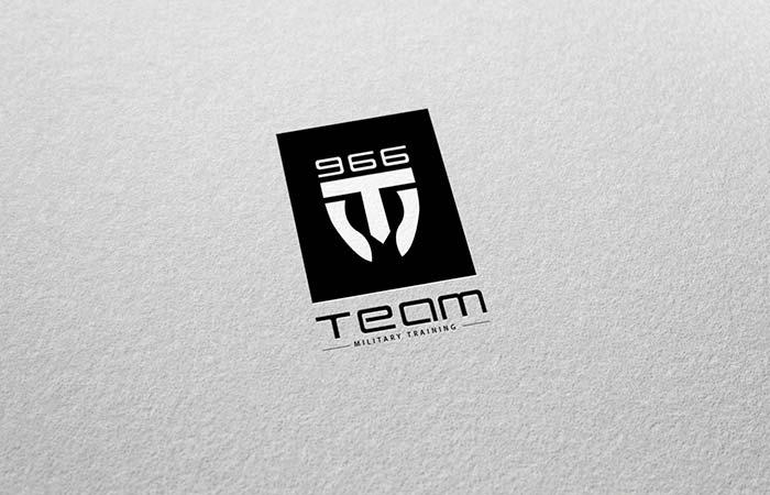 Team966